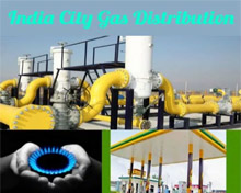Energy Sustainability & City Gas - LNG the Game Changer