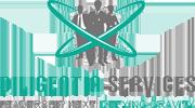 Diligentia Services logo